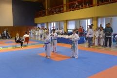 Moravia poomsae cup Hradec n.Moravicí 2017