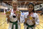 Jedeme dál. Úspěšný VTF – Vienna taekwondo festival 2018.